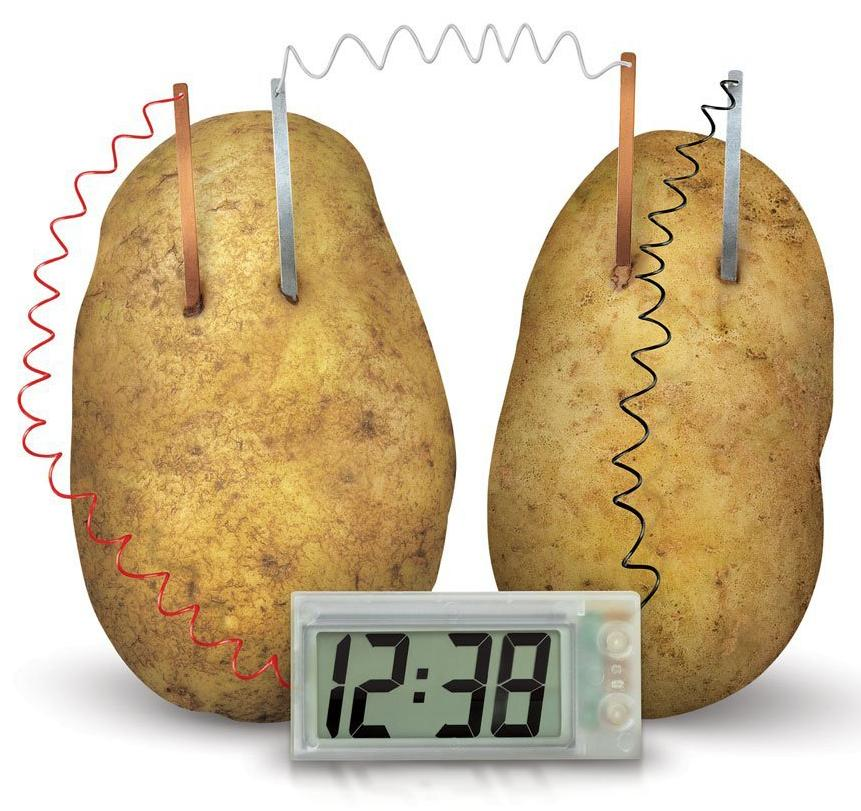 potato science project Looking for an easy project for the upcoming science fair why not try the simple potato clock.