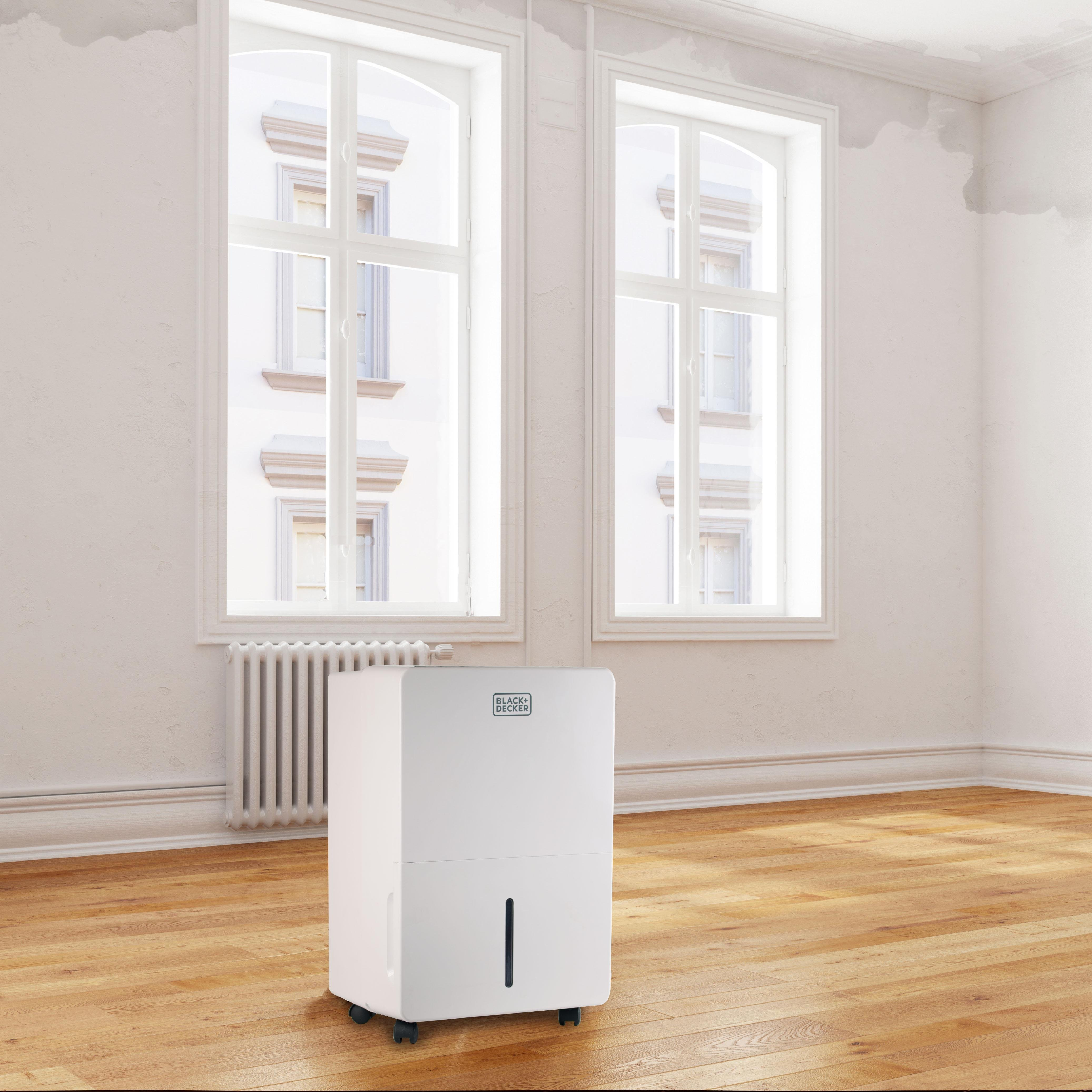 humidifier or dehumidifier for basement