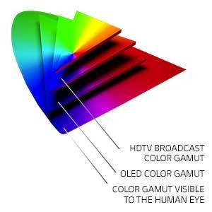 Intense Color