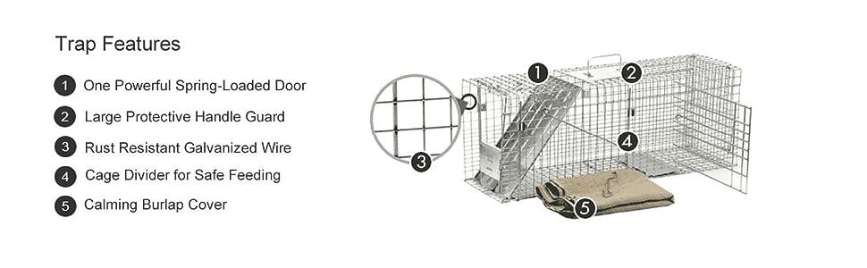 Amazon.com: Jaula de rescate para gatos Havahart 1099 ...