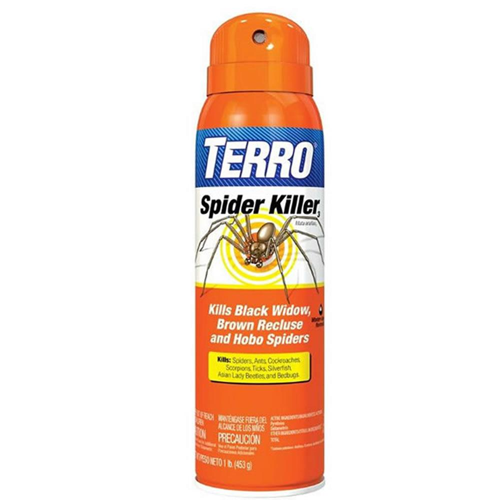 9e93f8cff20 Amazon.com   TERRO T2302 Spider Killer Aerosol Spray   Home Pest ...
