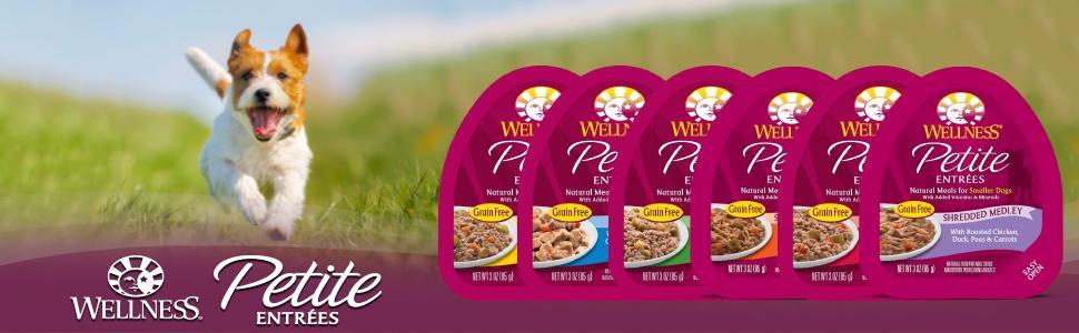 small breed dog food,small dog food,dog food small breed,natural small breed dog food, wet dog food