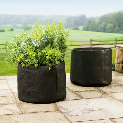 Amazon Com Smart Pots 5 Gallon Smart Pot Soft Sided