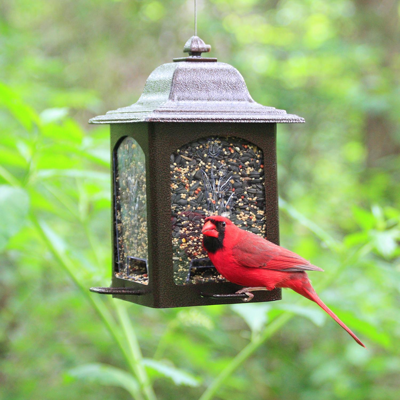 Birdscapes 367 tulip garden lantern bird for How to make a cool bird feeder