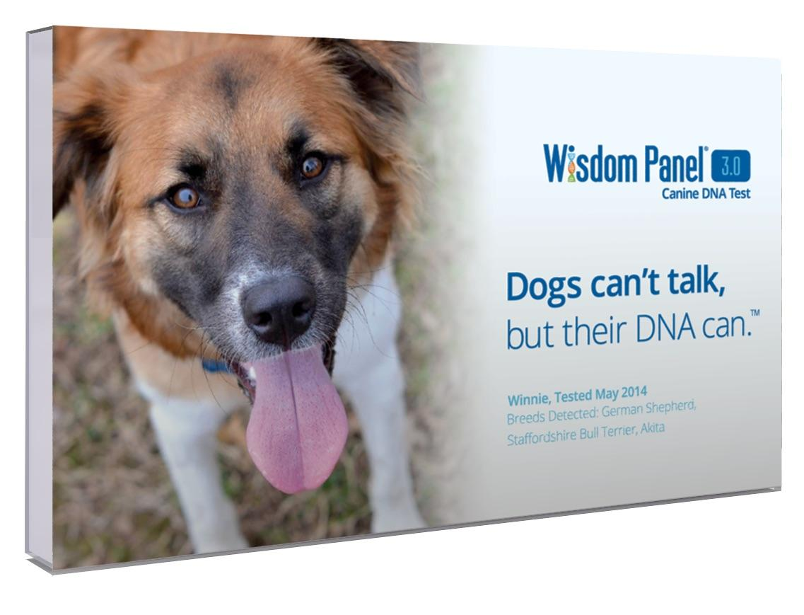 Wisdom Panel Mixed Breed Dna Test For Dogs Reviews