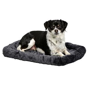 Dog on 24in Gray Bed