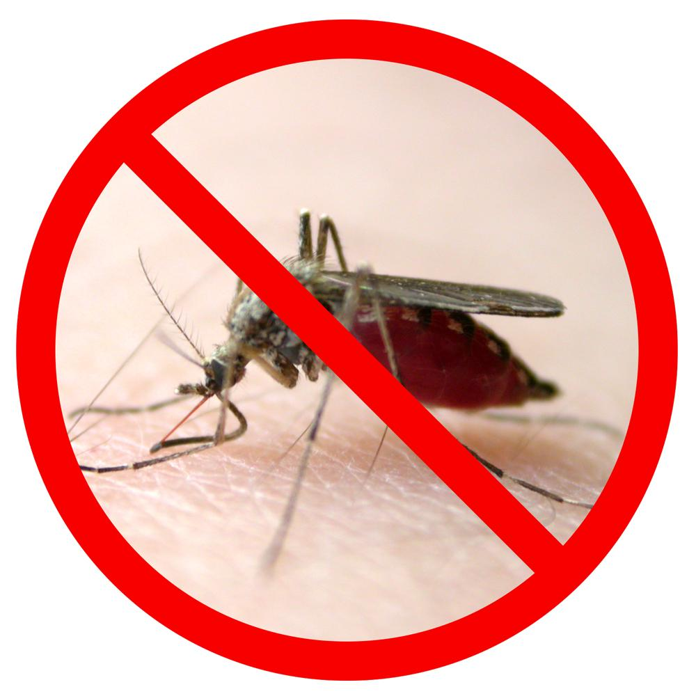 Travel Sized Insect Repellent