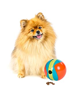 puzzle games, dog games, puzzles for dogs