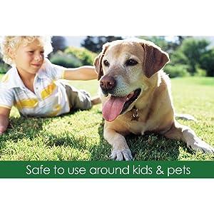 Safer Ringer Lawn Fertilizer - 25 Pounds