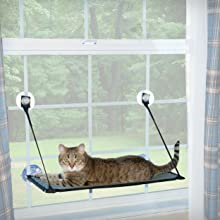 Kitty, sill, window, shelf, hammock