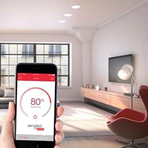 Amazon.com: Sengled Pulse JBL Bluetooth Speaker System, Master and Satellite BR30 LED Bulbs