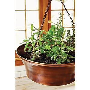 Indoor kitchen gardening turn your home into a year round for Indoor gardening amazon