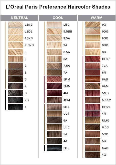 Amazon Com L Oreal Paris Superior Preference Ombre Touch Hair Color Ot5 Light To Medium Brown