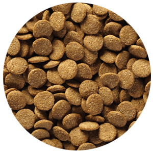 limited ingredient dog food kibble