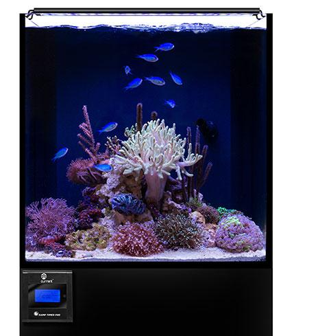 Orbit Marine LED  sc 1 st  Amazon.com & Amazon.com : Current USA Orbit Marine Aquarium LED Light 24 to 36 ... azcodes.com