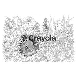 Crayola color escapes coloring pages pencil for Crayola personalized coloring pages