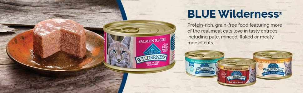 Amazon Blue Buffalo Wilderness Chicken Recipe Grain Free Dry Cat Food