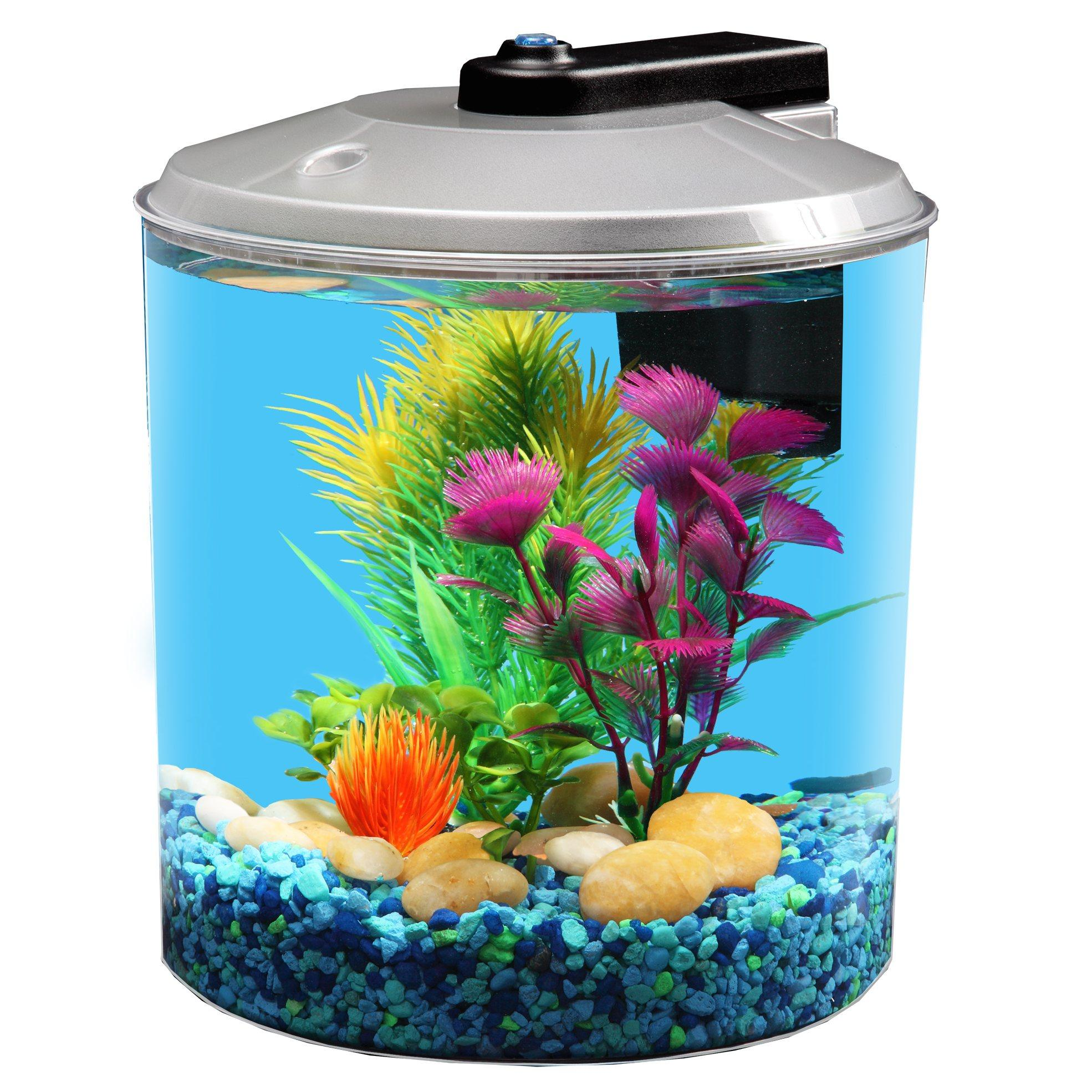 Api betta kit 360 degree fish tank 1 5 for Betta fish tanks amazon