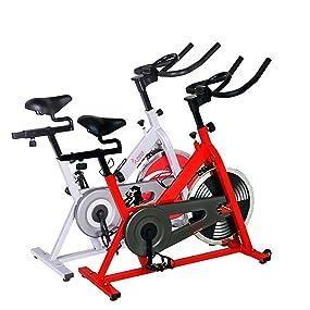 Amazon.com : Sunny SF-B1001 Indoor Cycling Bike : Exercise