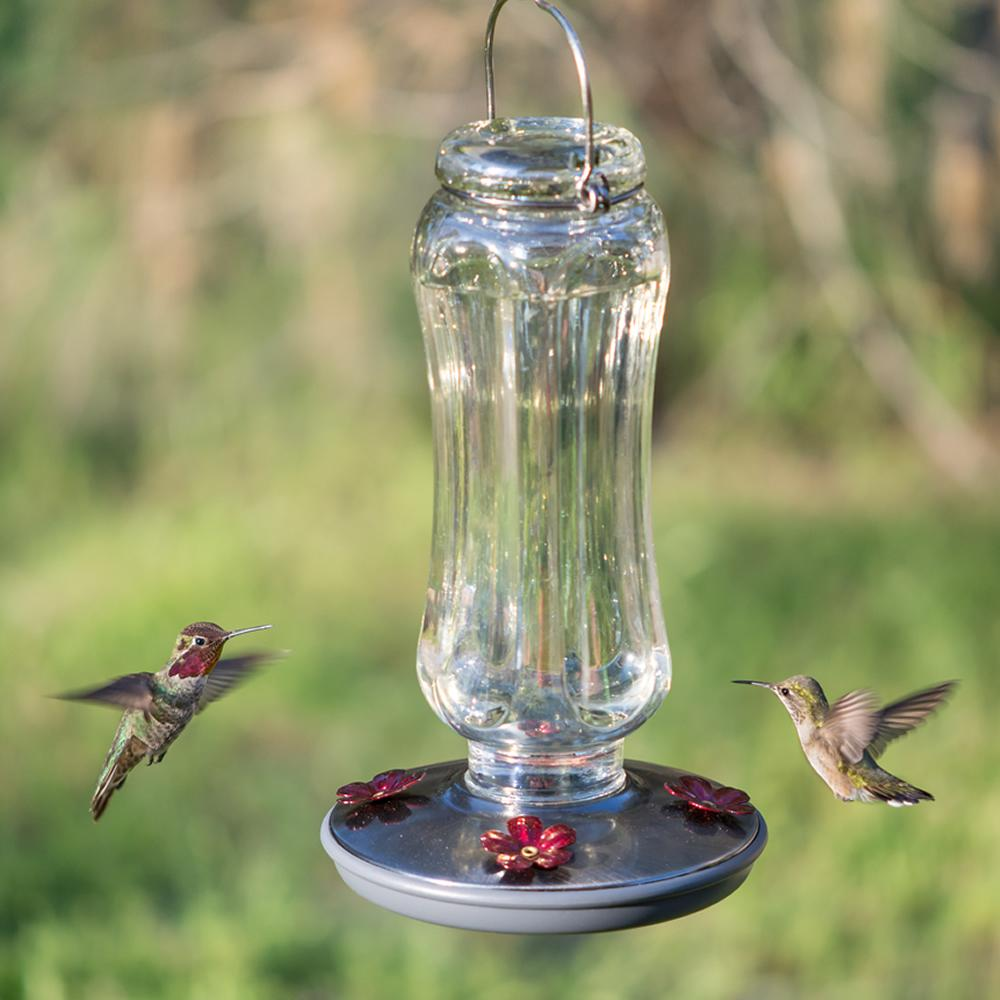 how to clean a glass hummingbird feeder