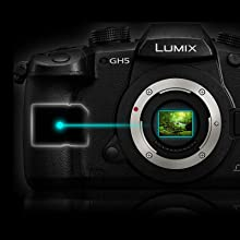 LUMIX GH5KBODY - 4:2:2 10-bit Internal Recording