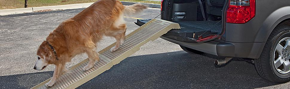 Amazon Com Petstep Original Folding Pet Ramp Khaki Beige Pet