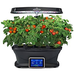 Amazoncom Miracle Gro AeroGarden Bounty with Gourmet Herb Seed