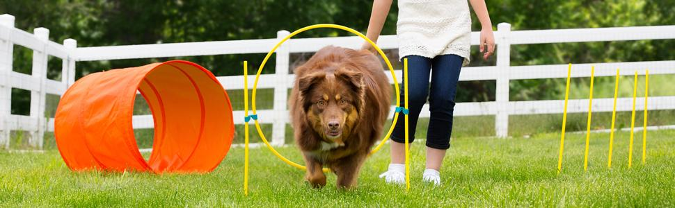 Amazon.com : Zip & Zoom Outdoor Agility Kit, 3 Obstacle ...