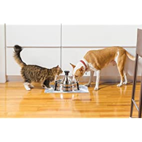 petsafe pet safe drinkwell drink well 360 stainless steel multiple pets multi-pet fountain bowl
