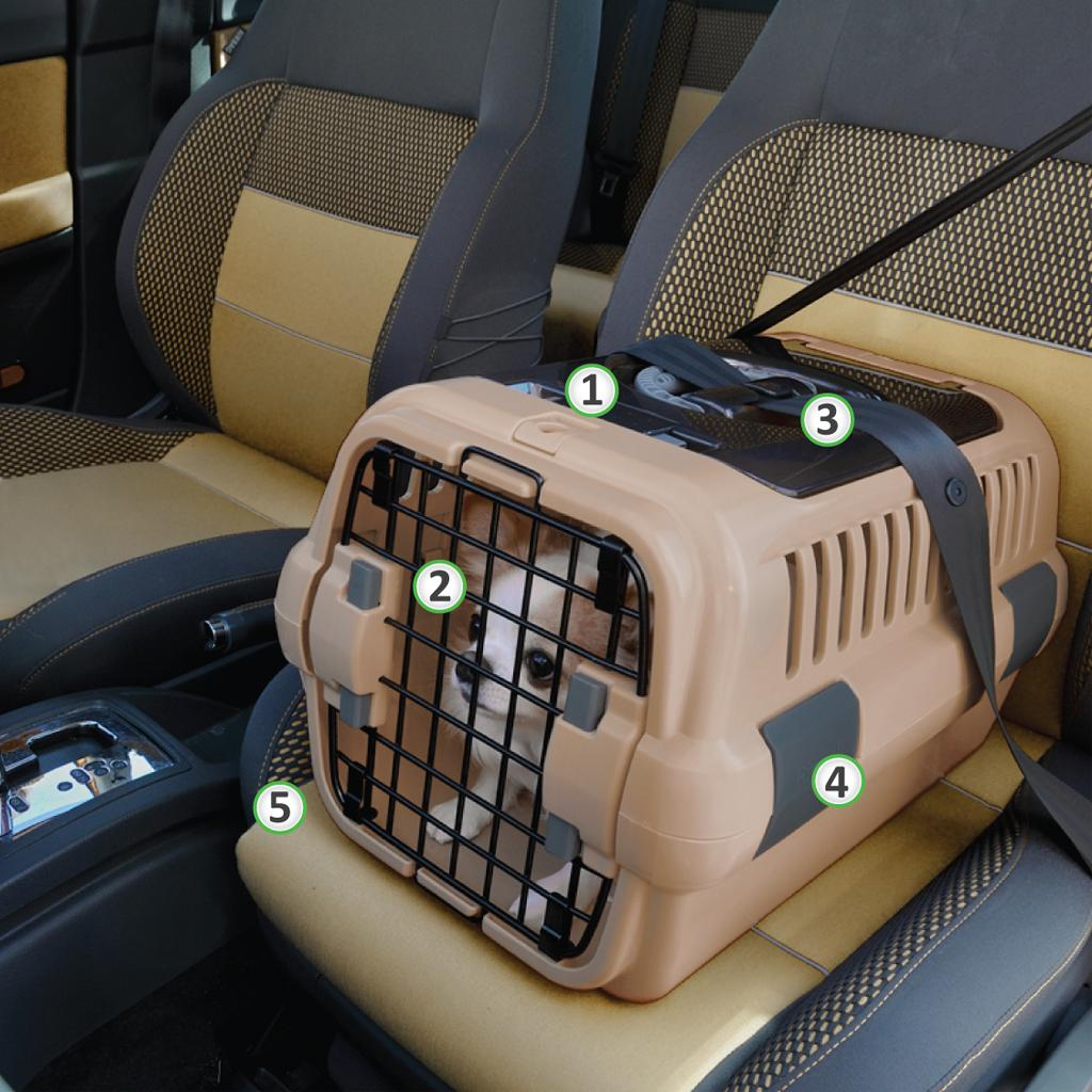 From the manufacturer & Amazon.com : Richell 94913 Double Door Pet Carrier Small Brown ...