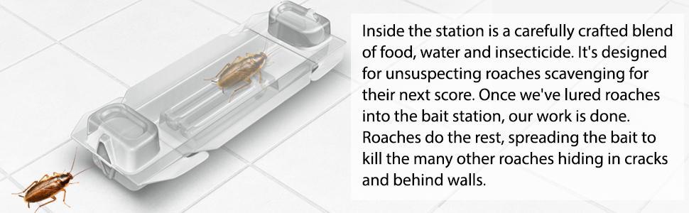 advion bait station instructions