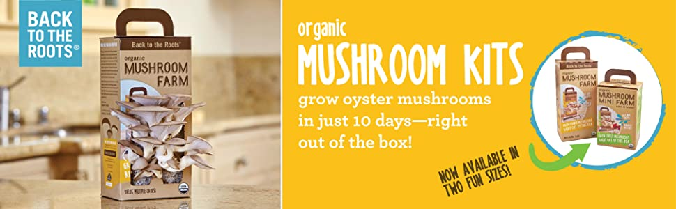 Amazon.com: Back to the Roots Organic Mushroom Growing Kit