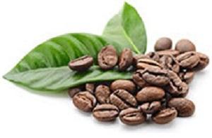 Green Mountain Coffee, Green Mountain Coffee regular, Keurig K-Cup pods, Keurig coffee, Keurig