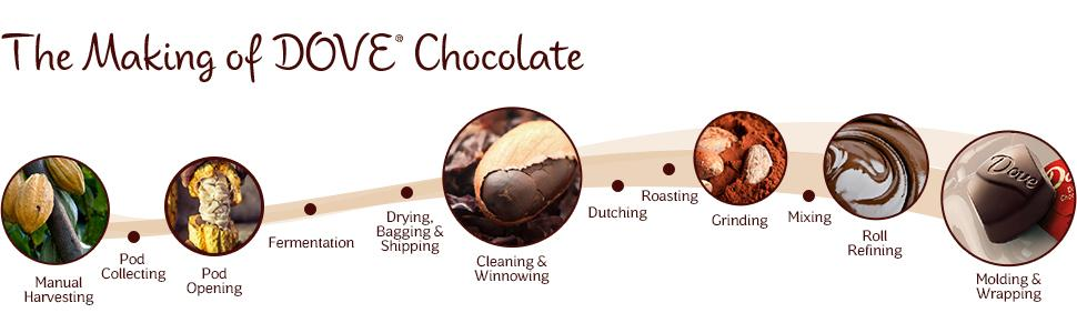 Learn the process of making DOVE Chocolate — from harvesting to wrapping chocolate bars and candy.