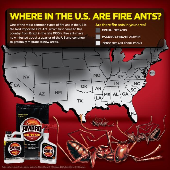 Amazoncom Amdro Fire Ant Bait Granules Oz Home Pest Lures - Map of where fire ants are found in the us