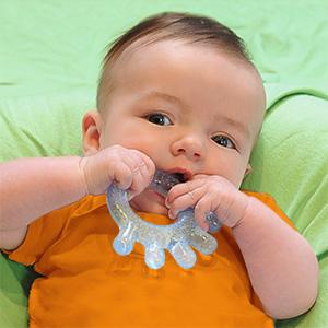 baby, toddler, infant, teething, teether, sophie, toy, ring, soother