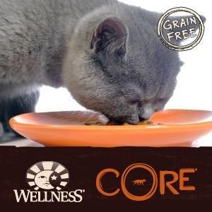 best wet cat food, high protien, high-protein, grain-free, grain free, CORE Hearty Cuts