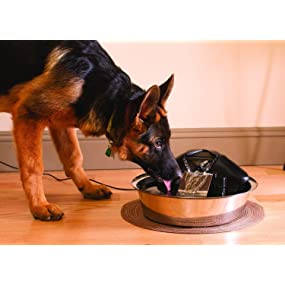 pet safe petsafe drink well drinkwell fountain water filter dog cat dogs cats bowl fresh clean