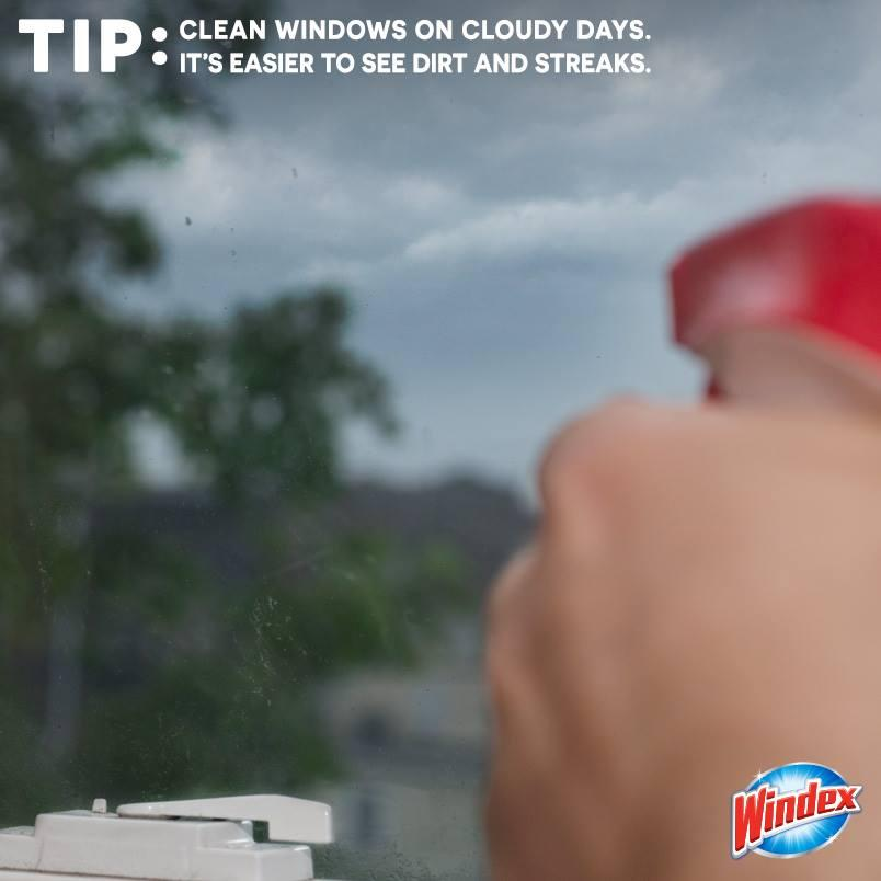 Amazon Windex Multi Surface Cleaner Spray Crystal