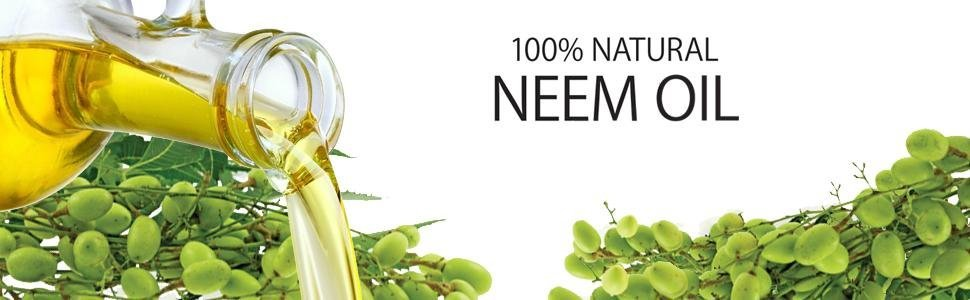 Neem Oil Header