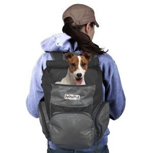 Amazon.com : Poochpouch Dog Carrier, Backpack Carrier for Small ...