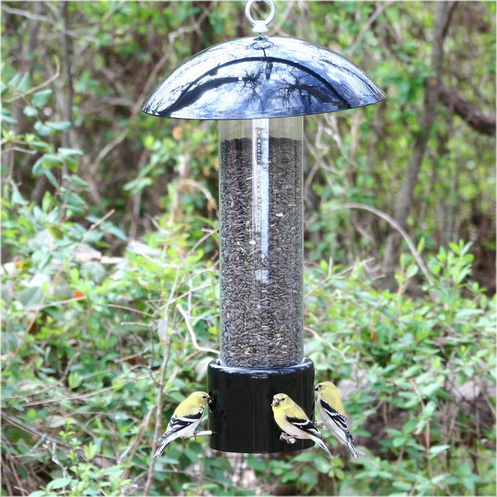 Outdoor seasons squirrel be gone iii bird feeder-5350