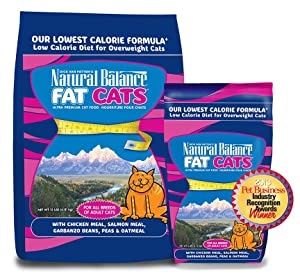 Dry Cat Food To Help Lose Weight