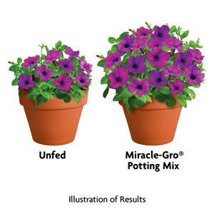 Best miracle grow potting soil for indoor plants for Potting soil versus garden soil