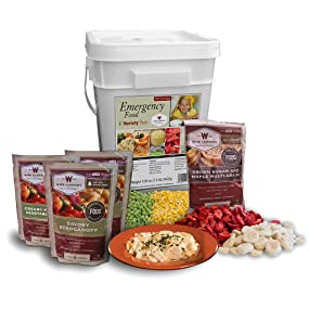 Amazon.com : Wise Company Emergency Food Variety Pack (104-Serving ...