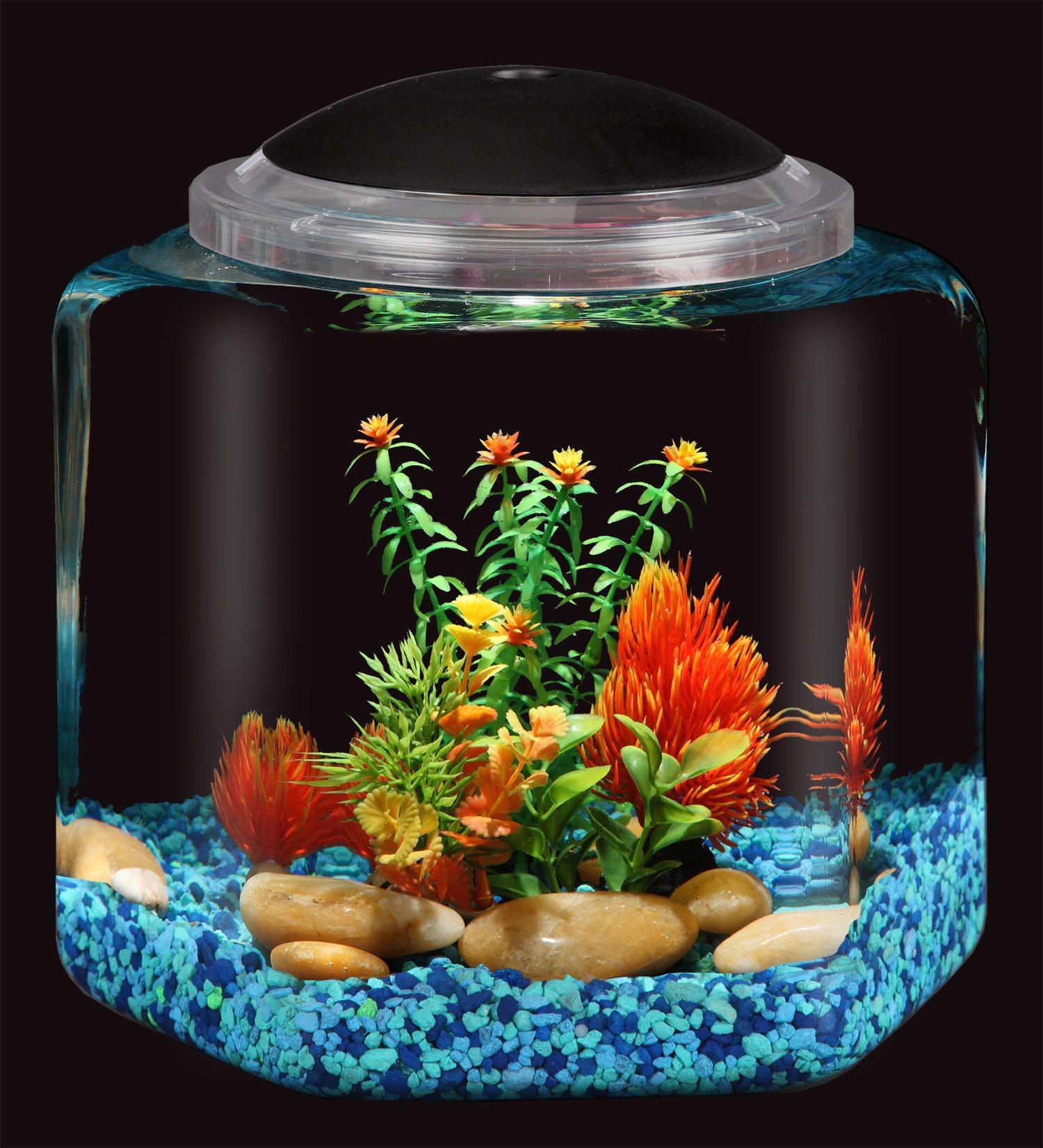 Fish aquarium in bangladesh - From The Manufacturer