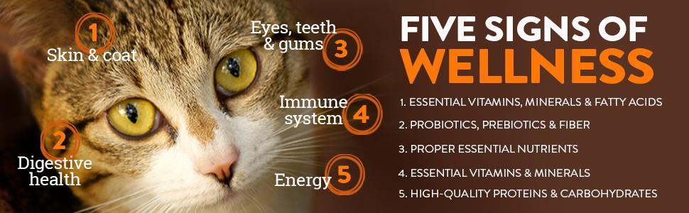 grain free cat food, grain-free, gluten free, gluten-free, high protein, high-protein, protien, CORE