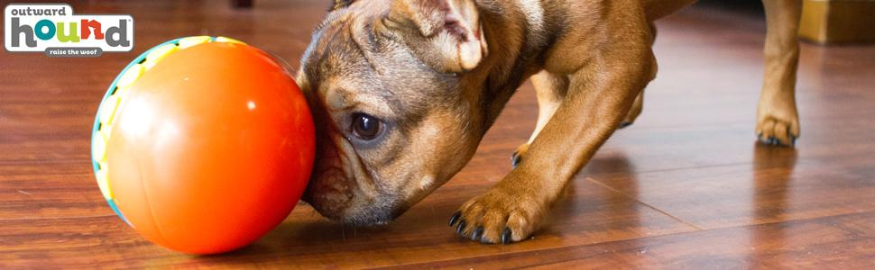Pet Supplies : Outward Hound Treat Chaser Treat Ball