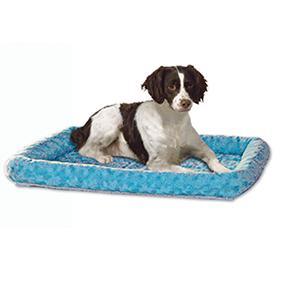 Dog on Blu