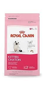 ROYAL CANIN FELINE HEALTH NUTRITION Kitten dry cat food
